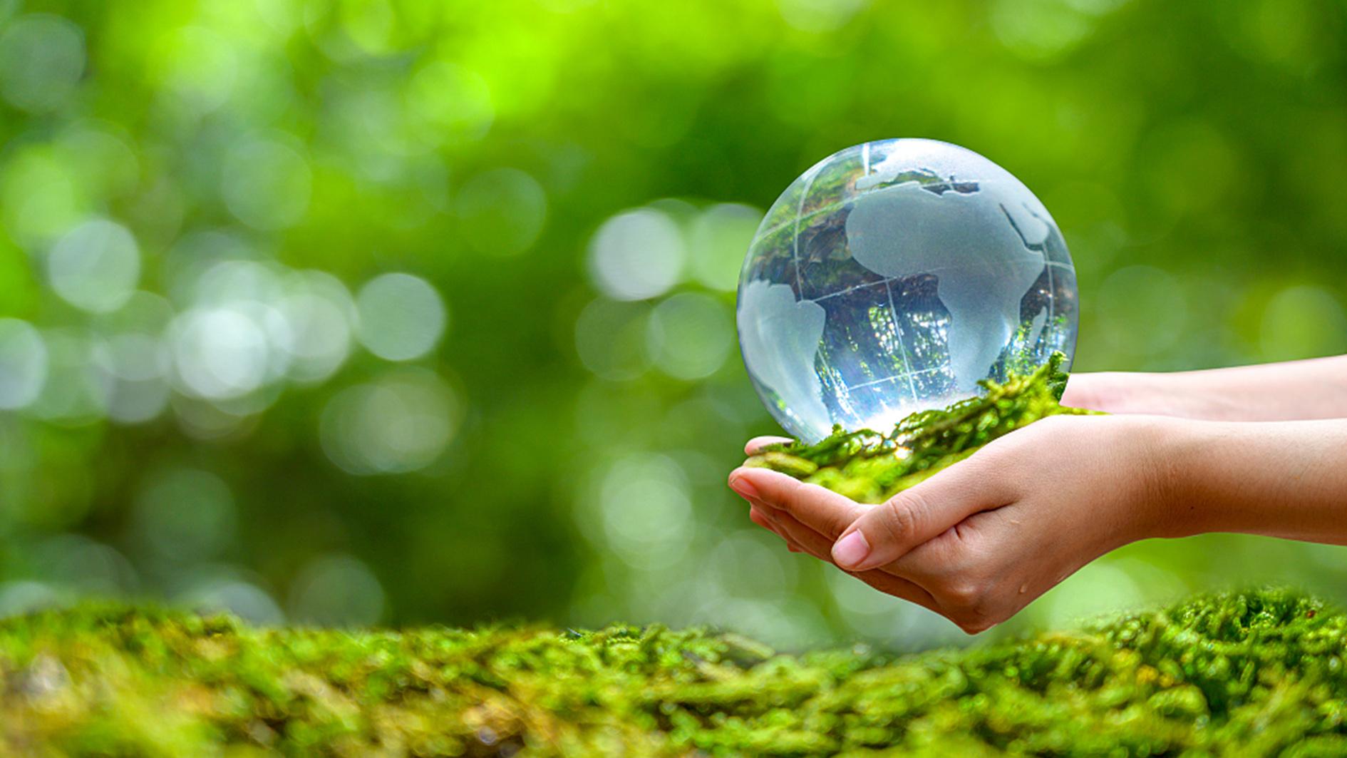 Sử dụng túi ni lông đúng cách giúp bảo vệ môi trường