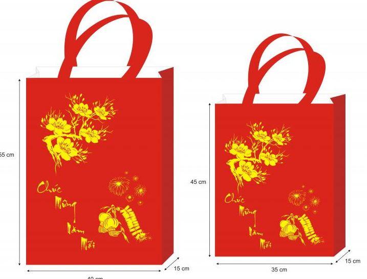 Chuyên cung cấp các mẫu túi vải không dệt tại TP.HCM